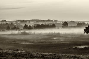 Morning in the fog by wiwaldi24