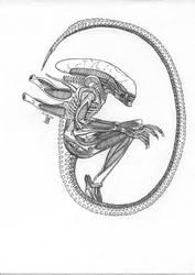 Alien - Lineart by MisterIngo