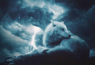 Waiting for the Storm by IkyuValiantValentine