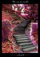 the way of stairs by ad-shor