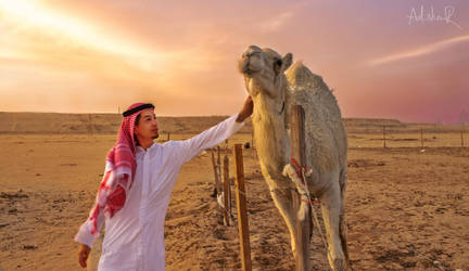 The desert touch by ad-shor