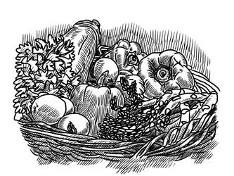 Apparel design illustration explorations by simonh4