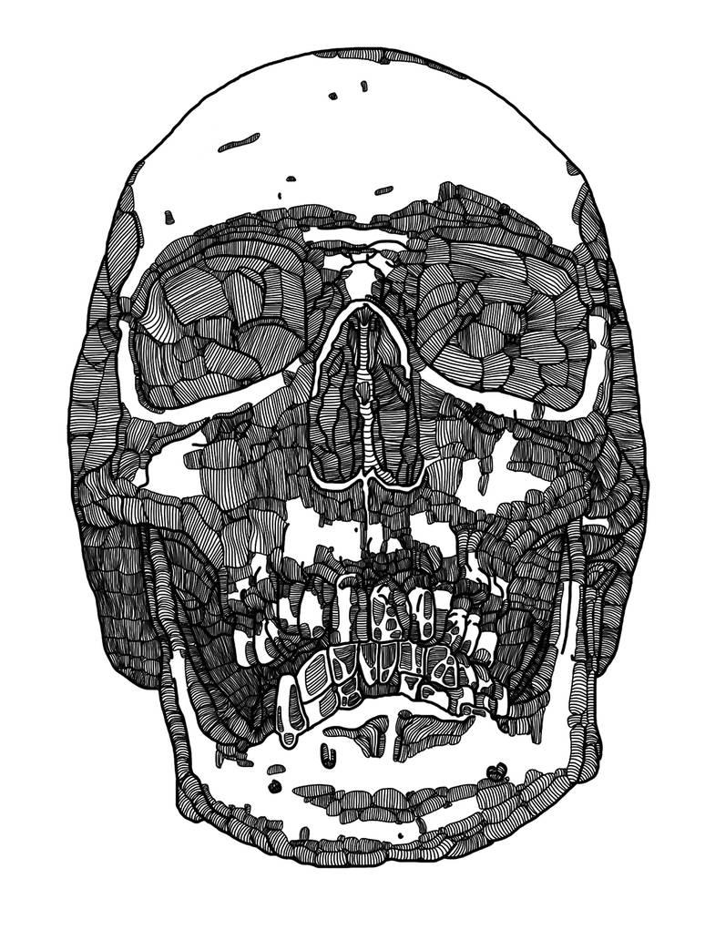 Human skull by simonh4