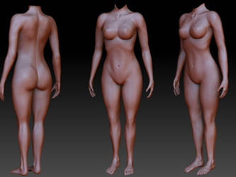 Female body by FuriKar