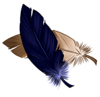 [Image: feathers_by_equusballatorsociety_daul4y2-200h.png]