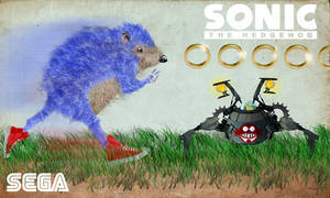 Sonic The Hedgehog by matthewethan