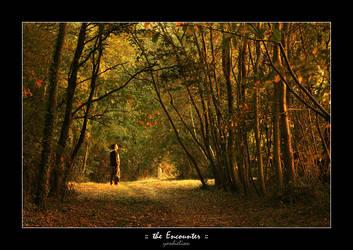 :: the Encounter :: by yardieLion