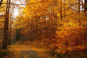 Herbst halt by DrAzraelTod