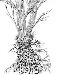Sketchy by Megadas