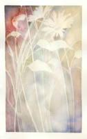 fleur by PEHDTSCKJMBA