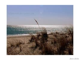 Winter beach by javv556