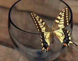 Butterfly Re-Render by Emperor-Monkey