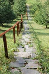 Path by ElektromosVihar