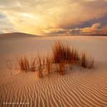 Desert Storm 2 by hougaard