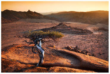 Inhospitable : On the Left? by hougaard