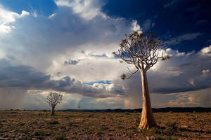 Thunder Parade by hougaard