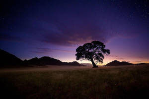 Nightfall by hougaard