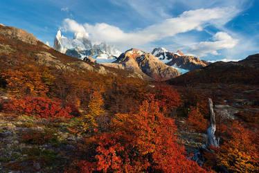 Peak Season by hougaard