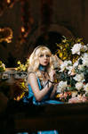 Alice In Wonderland Cosplay by Bizarre-Deer