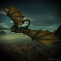 Wyvern by ChristineG