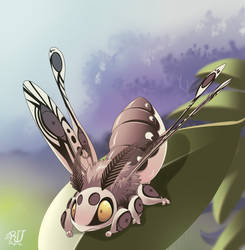 A cute Moth by phation