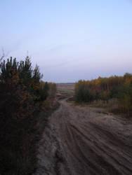 Path to Miekinia by Armand666