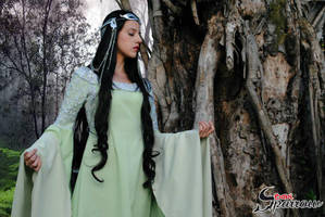 Arwen Undomiel - lord of the rings - cosplay by BabiSparrow