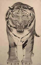 Tiger by 9-Araya-6