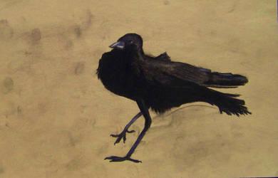Crow by 9-Araya-6
