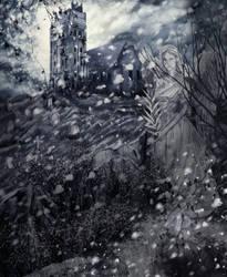 Memory by Varagka