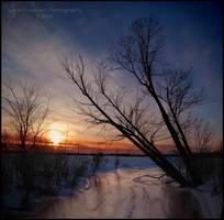 Unloved by Sarah--Lynne