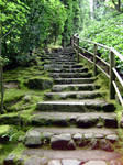 Japanese Garden Stairs by BlueDoorPhotography