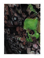 Green skull by kinow