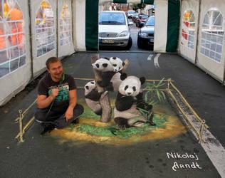 Panda Bears by Nikolaj-Arndt