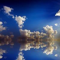 disturbed heaven by mohdfikree