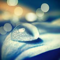 morning rain by mohdfikree