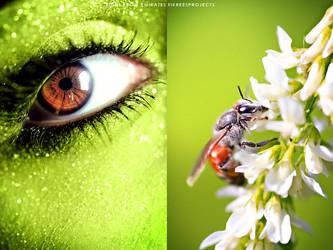 Honeyholic by mohdfikree