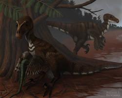 Dromaeosaurus albertensis by MicrocosmicEcology
