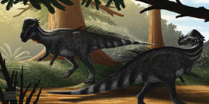Pachycephalosaurus wyomingensis by MicrocosmicEcology