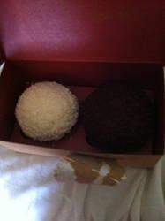Two Sprinkle Cupcakes by PrettyShadowj28