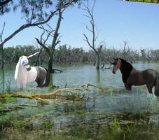 Land Quests Swamp Quest 1 by QueenSunshineMonster