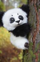 Little Panda! by Werdiga