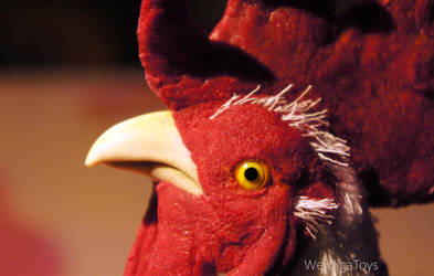 rooster's head by Werdiga
