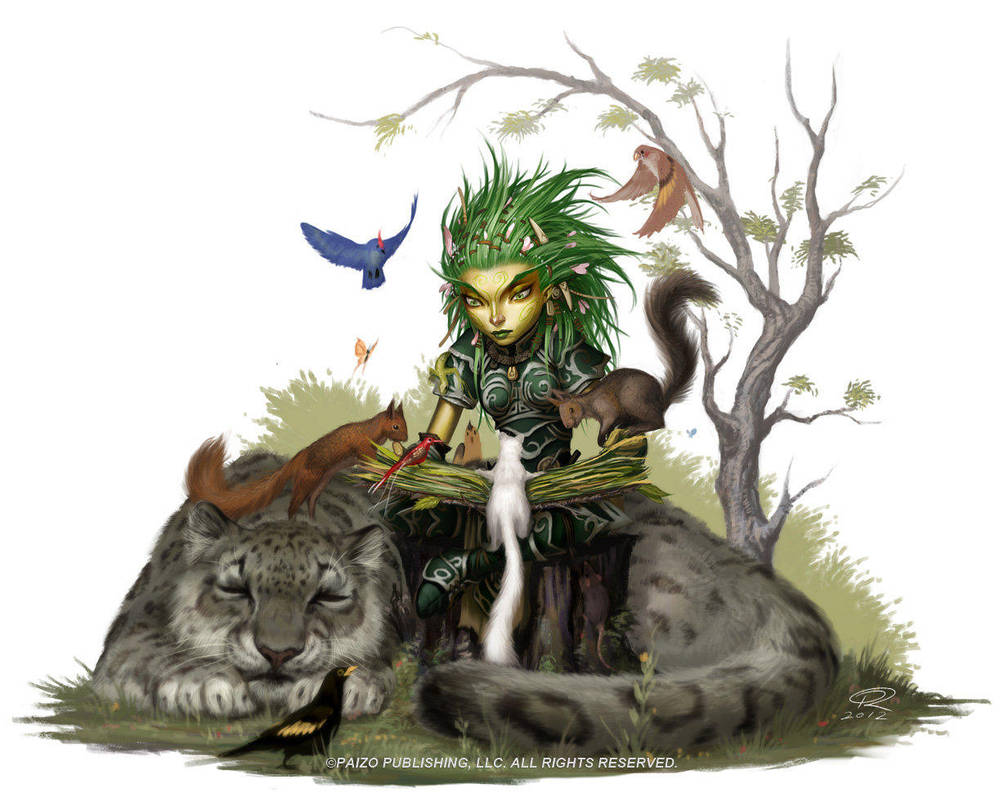 Druid Studies With Animals by Akeiron