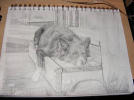 Resting Place - Mid-Sketch 3 by Dandy-L