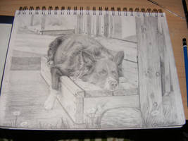 Resting Place - Finished by Dandy-L