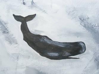 Sperm Whale by Dandy-L