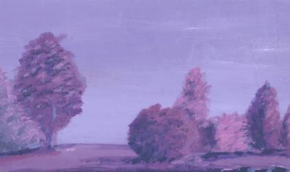 Somber Skies by starvingartist