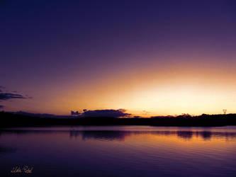 purple noon by Zlata-Petal