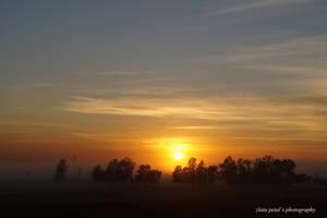 sunrise by Zlata-Petal